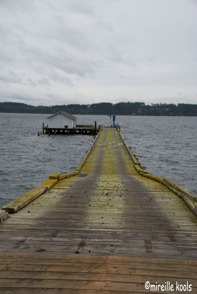 Whidbey I